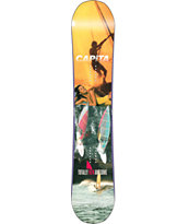 Capita Totally FkN Awesome 161cm 2013 Snowboard
