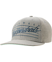 The Hundreds Daze Heather Grey & Navy Snapback Hat