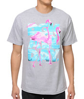 DGK Birds All Day Grey Tee Shirt