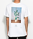 Akomplice x Synchrodogs Hidden Luster White T-Shirt
