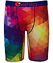 Ethika Spectrum Multi Colored Boys Boxer Briefs
