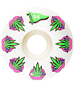 Primitive Taste Buds Team 54mm Skateboard Wheels