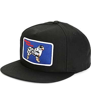 Dog Limited Australian Shepard Snapback Hat