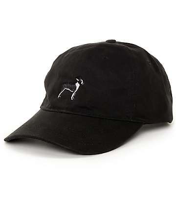 Dog Limited Boston Terrier Black Dad Hat