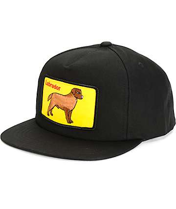 Dog Limited Labrador Snapback Hat