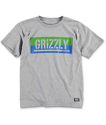 Grizzly Split Stamp Cub Heather Grey Boys T-Shirt