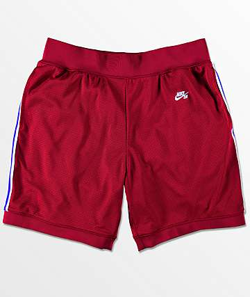 Nike SB Dry Court shorts rojos
