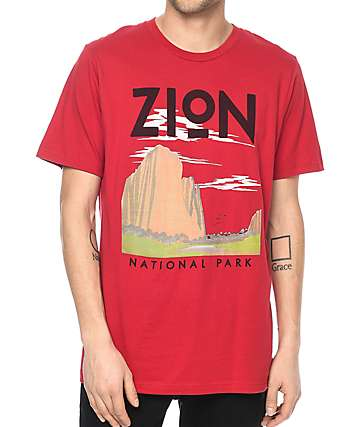 Parks Project Zion Vintage Red T-Shirt