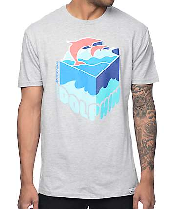 Pink Dolphin Depth Sample Grey T-Shirt
