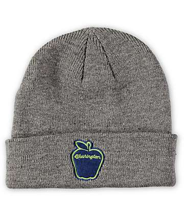 Spacecraft Washington Apple Beanie