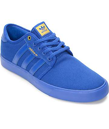 adidas Seeley Mono Royal Blue Skate Shoes