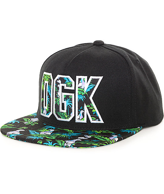 DGK By The Beach Black Snapback Hat