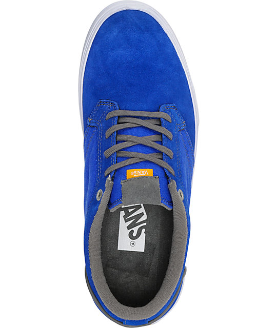 Vans Type II Royal & Pewter Skate Shoes
