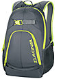 Dakine Pivot Charcoal & Lime Skate Backpack
