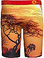 Ethika Acacia Orange & Black Boxer Briefs
