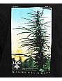 LRG Cultivators Of Green Black T-Shirt
