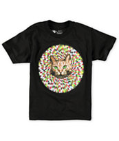 A-Lab Boys Hypno Cat T-Shirt