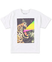 A-Lab Boys Power Cat White Tee Shirt
