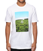 Akomplice Sea Of Green Box Logo T-Shirt