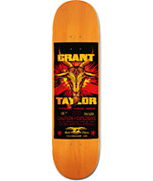 "Anti Hero Taylor Shorter Fuse 8.25"" Skateboard Deck"