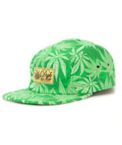 DGK Homegrown 5 Panel Hat