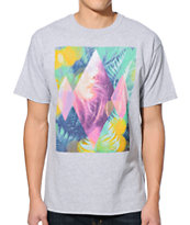 Empyre So Fine Heather Grey Tee Shirt
