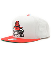 NBA  Hall Of Fame x Mitchell and Ness Bulls Grey Snapback Hat