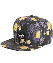 Neff Traveler Snapback Hat