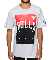 Neff x NBA Bulls Dots T-Shirt