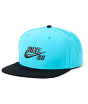 Nike SB Icon Dusty Cactus Snapback Hat