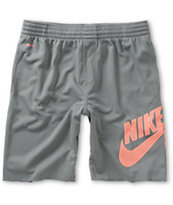 Nike SB Sunday Dri-Fit Grey Shorts