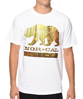 Nor Cal Redwood Bear Tee Shirt