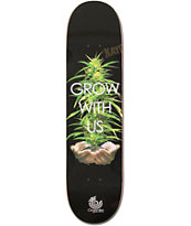 Organika Grow With Us 8.06 Skateboard Deck