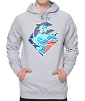 Pink Dolphin Fall Waves Hoodie