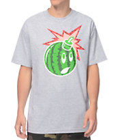 The Hundreds Watermelon Adam Heather Grey Tee Shirt