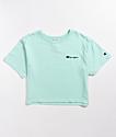 Champion Ice Crop T-Shirt