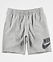 Nike SB Icon Fleece Grey Shorts