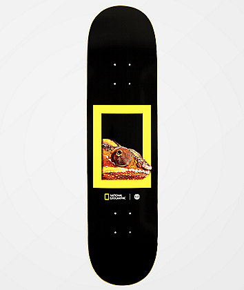 "Element x National Geographic Dragon 8.0"" Skateboard Deck"
