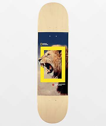 "Element x National Geographic Nyjah Lion 8.0"" Skateboard Deck"