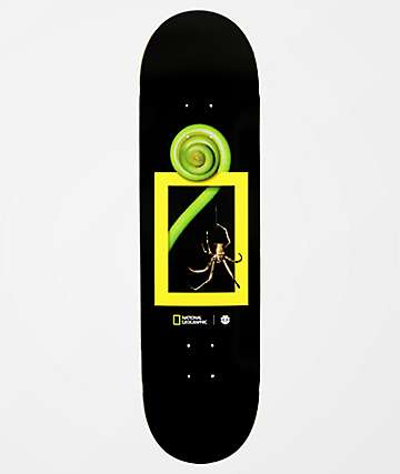 "Element x National Geographic Spider 8.38"" Skateboard Deck"