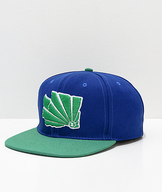 Casual Industrees WA Brah Blue & Green Snapback Hat