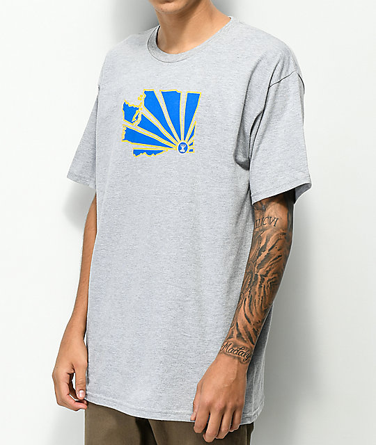 Casual Industrees WA Brah Grey T-Shirt
