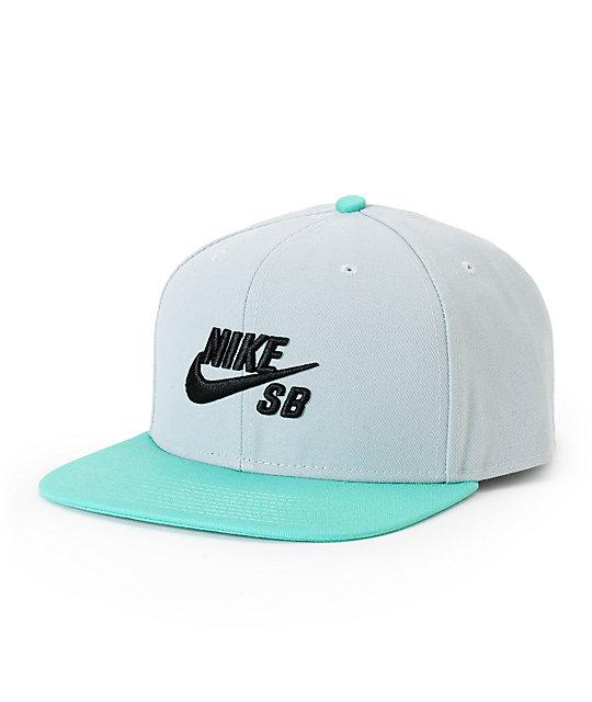 e15a90aebeee9 Nike SB Icon Snapback Hat