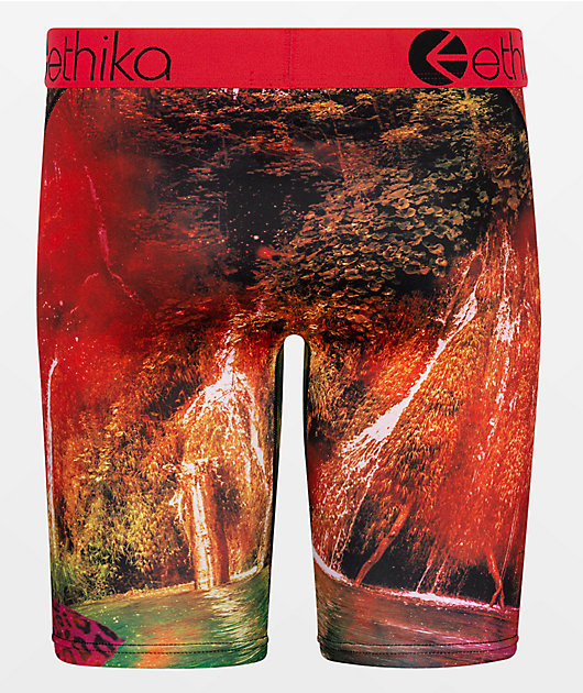 Ethika Roar And Chill Boxer Briefs
