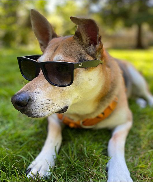 Ray-Ban Justin gafas de sol polarizadas de goma negra